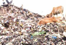 Assam dumping ground