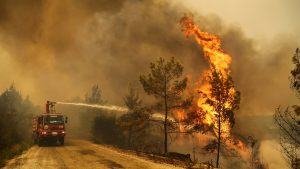 Turkey Deadly Wild Fire